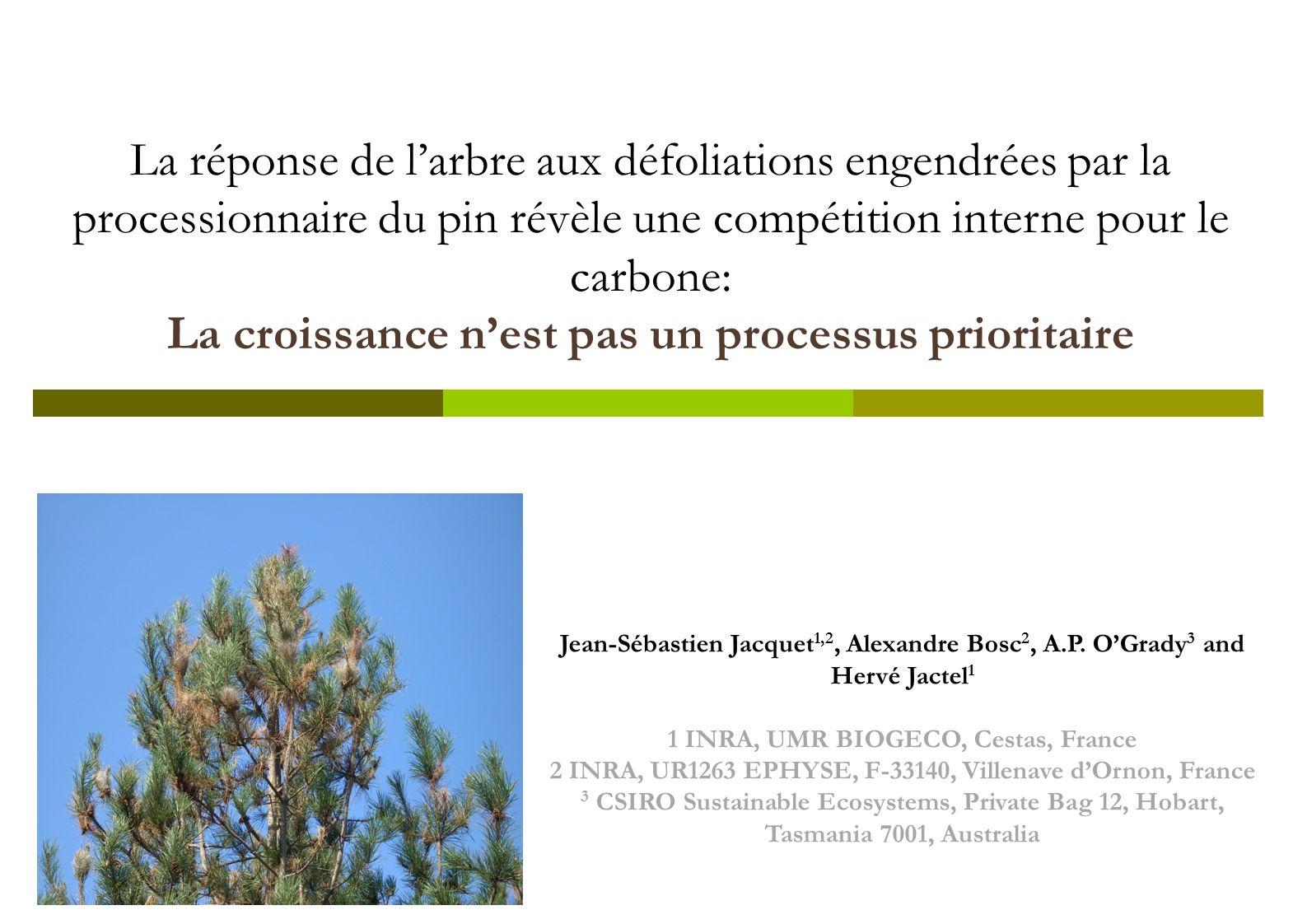 La réponse de larbre aux défoliations engendrées par la processionnaire du pin révèle une compétition interne pour le carbone: La croissance nest pas