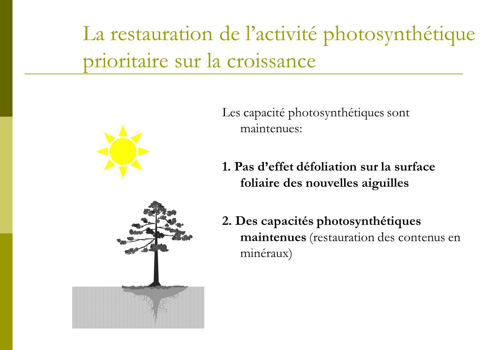 La restauration de lactivité photosynthétique prioritaire sur la croissance Les capacité photosynthétiques sont maintenues: 1. Pas deffet défoliation