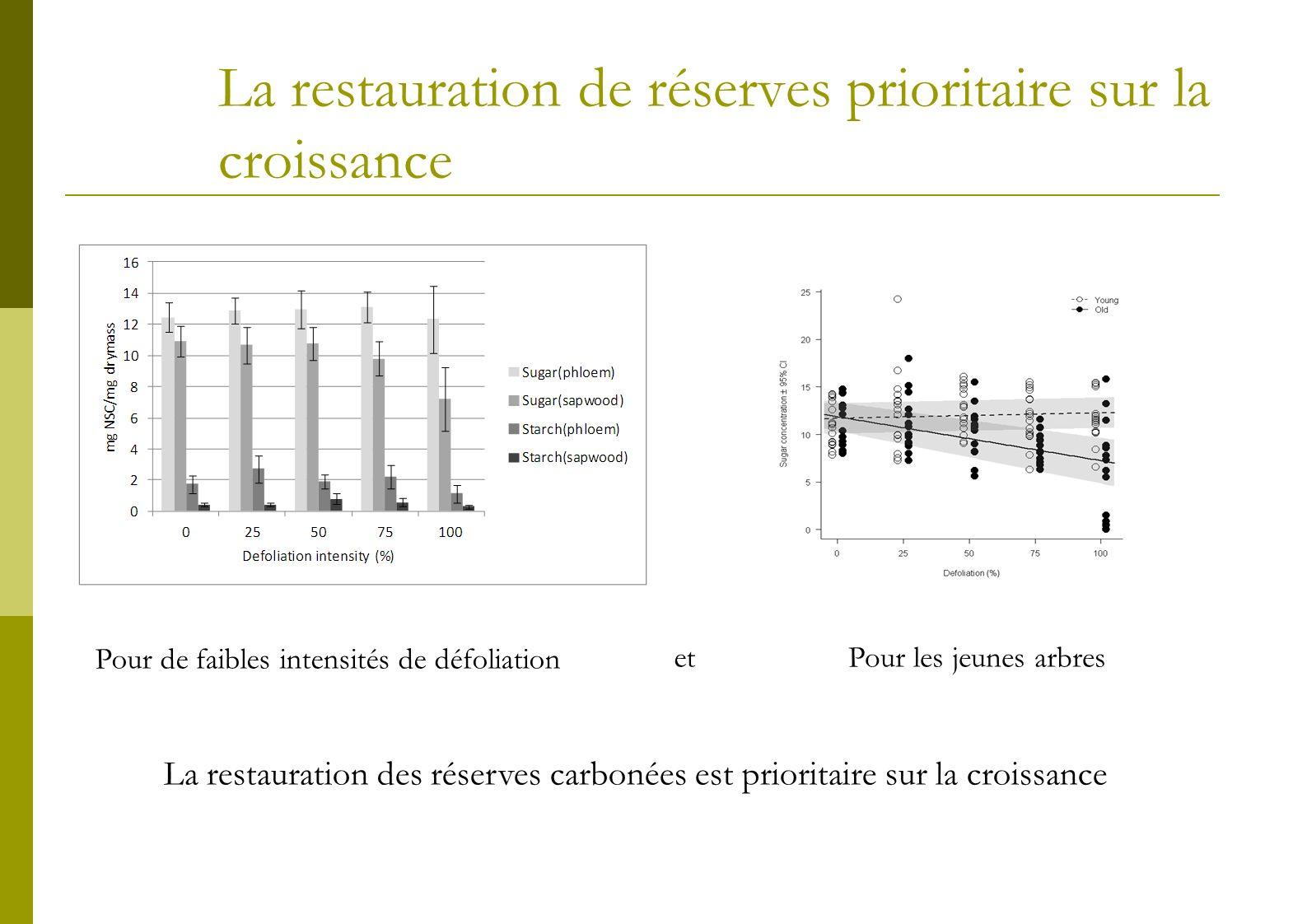 La restauration de réserves prioritaire sur la croissance Pour de faibles intensités de défoliation etPour les jeunes arbres La restauration des réser
