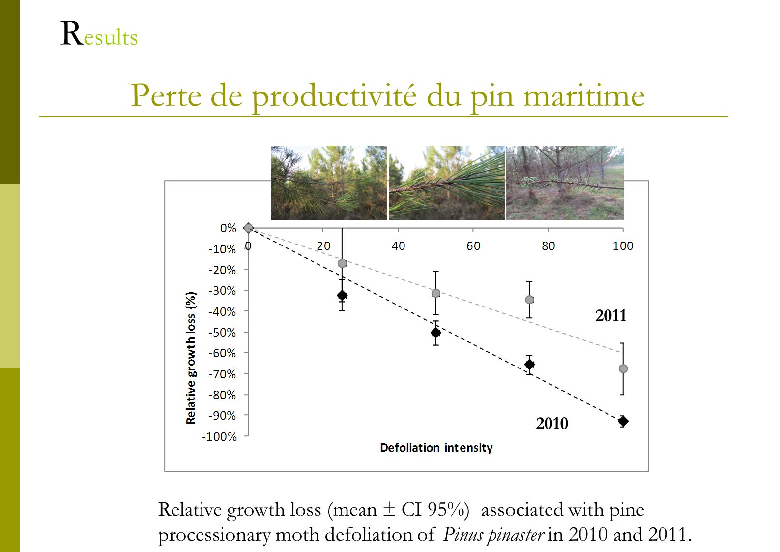 Perte de productivité du pin maritime R esults Relative growth loss (mean ± CI 95%) associated with pine processionary moth defoliation of Pinus pinas