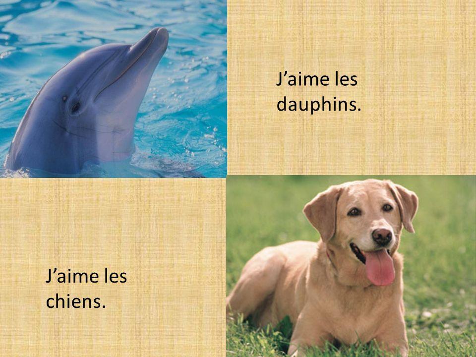 Jaime les chiens. Jaime les dauphins.