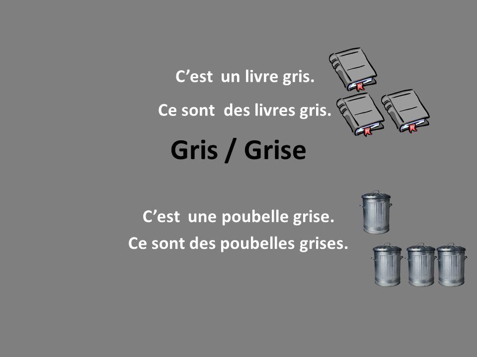 Gris / Grise Cest une poubelle grise. Ce sont des poubelles grises. Cest un livre gris. Ce sont des livres gris.