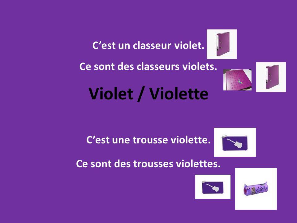 Violet / Violette Cest une trousse violette. Ce sont des trousses violettes. Cest un classeur violet. Ce sont des classeurs violets.