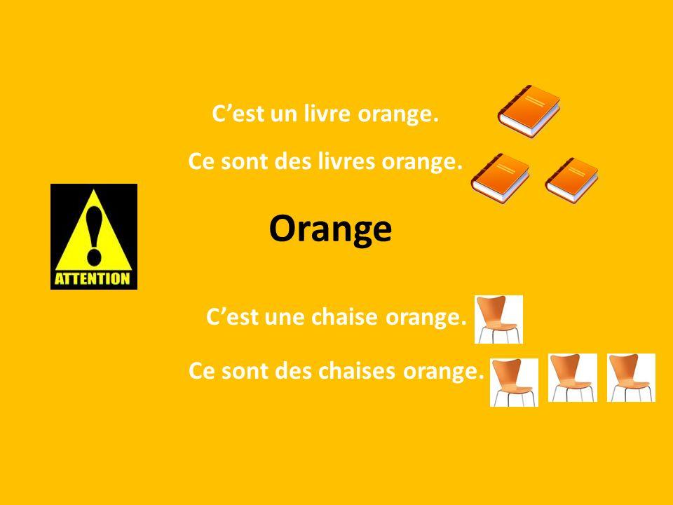 Orange Cest une chaise orange. Ce sont des chaises orange. Cest un livre orange. Ce sont des livres orange.