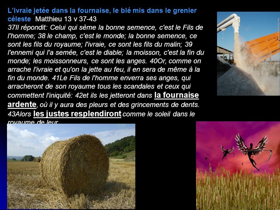 Livraie jetée dans la fournaise, le blé mis dans le grenier céleste Matthieu 13 v 37-43 37Il répondit: Celui qui sème la bonne semence, c'est le Fils