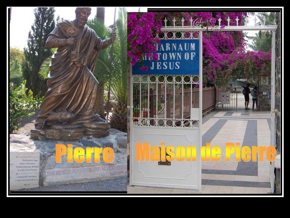 Il y a des gens qui font le plus grand cas des paroles de Jésus á lapôtre Pierre Mathieu 16 v.18Et moi, je te dis que tu es Pierre, et que sur cette pierre je bâtirai mon Église, et que les portes du séjour des morts ne prévaudront point contre elle.