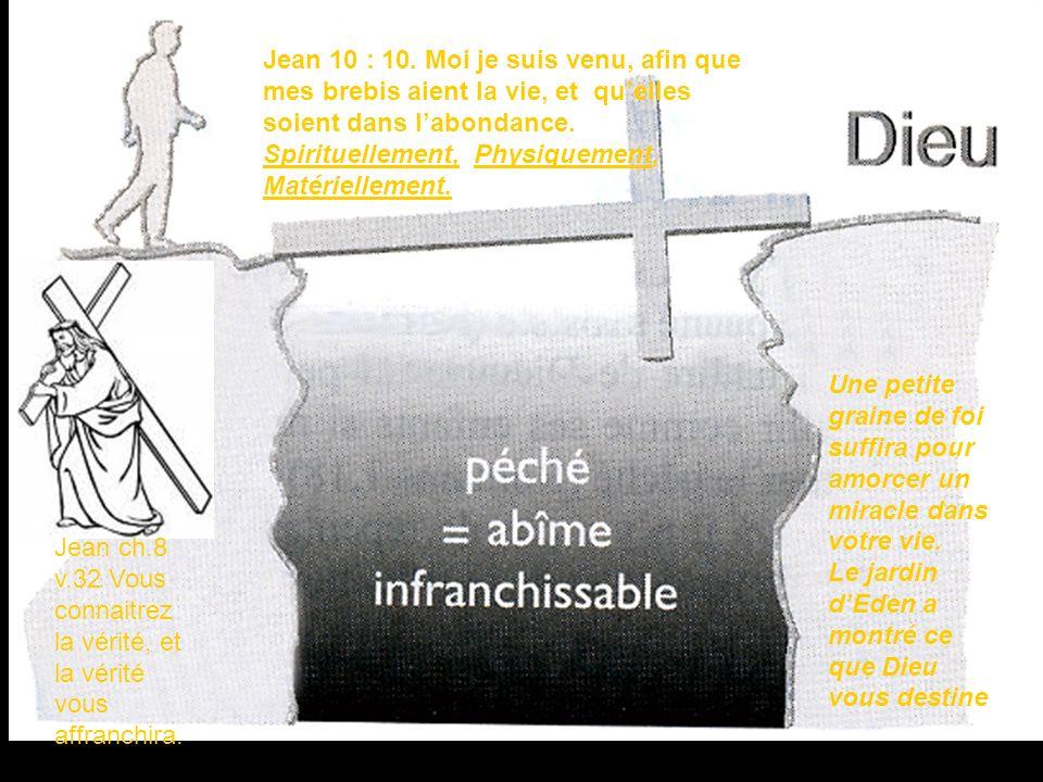 Ephesians ch.1 v 16-19 Jean 10 : 10. Moi je suis venu, afin que mes brebis aient la vie, et quelles soient dans labondance. Spirituellement, Physiquem