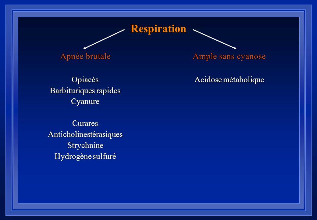 Pupilles Mydriase peu aréactive Antidépresseurs tricycliques Cocaïne Phénothiazines antihistaminiques ButyrophénonesMéthanolHaschichCarbamazépineAtrop