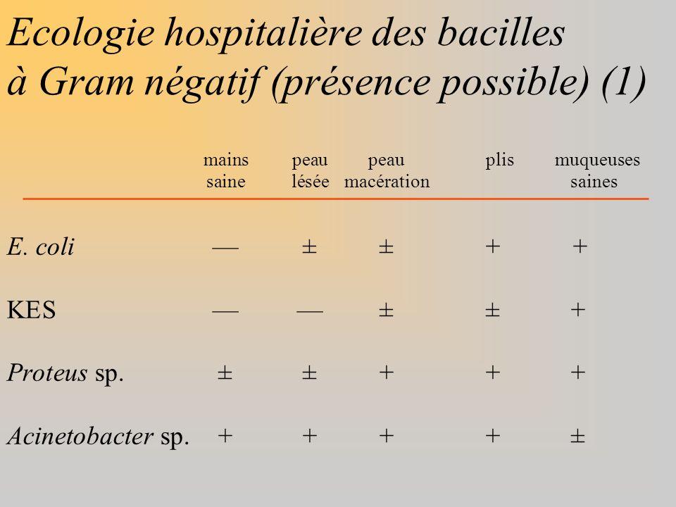 Ecologie hospitalière des bacilles à Gram négatif (présence possible) (1) mainspeaupeauplis muqueuses saineléséemacération saines E. coli±± + + KES±±+