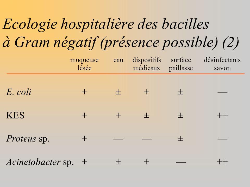 Ecologie hospitalière des bacilles à Gram négatif (présence possible) (2) muqueuseeaudispositifssurfacedésinfectants léséemédicauxpaillassesavon E. co