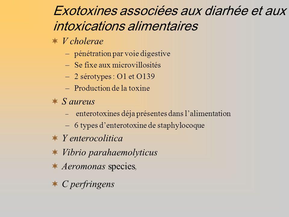 Exotoxines associées aux diarhée et aux intoxications alimentaires V cholerae –pénétration par voie digestive –Se fixe aux microvillosités –2 sérotype