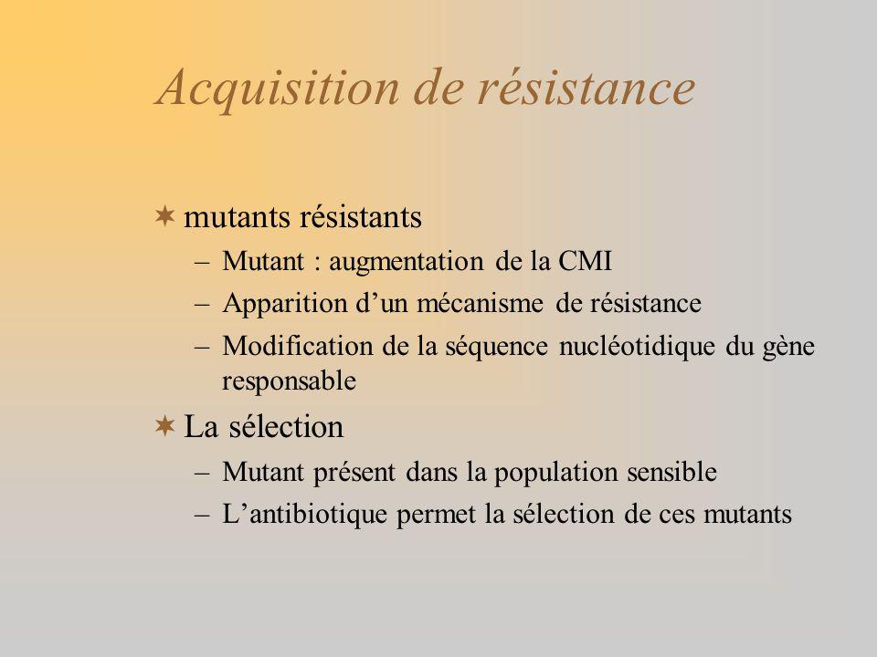 Acquisition de résistance mutants résistants –Mutant : augmentation de la CMI –Apparition dun mécanisme de résistance –Modification de la séquence nuc
