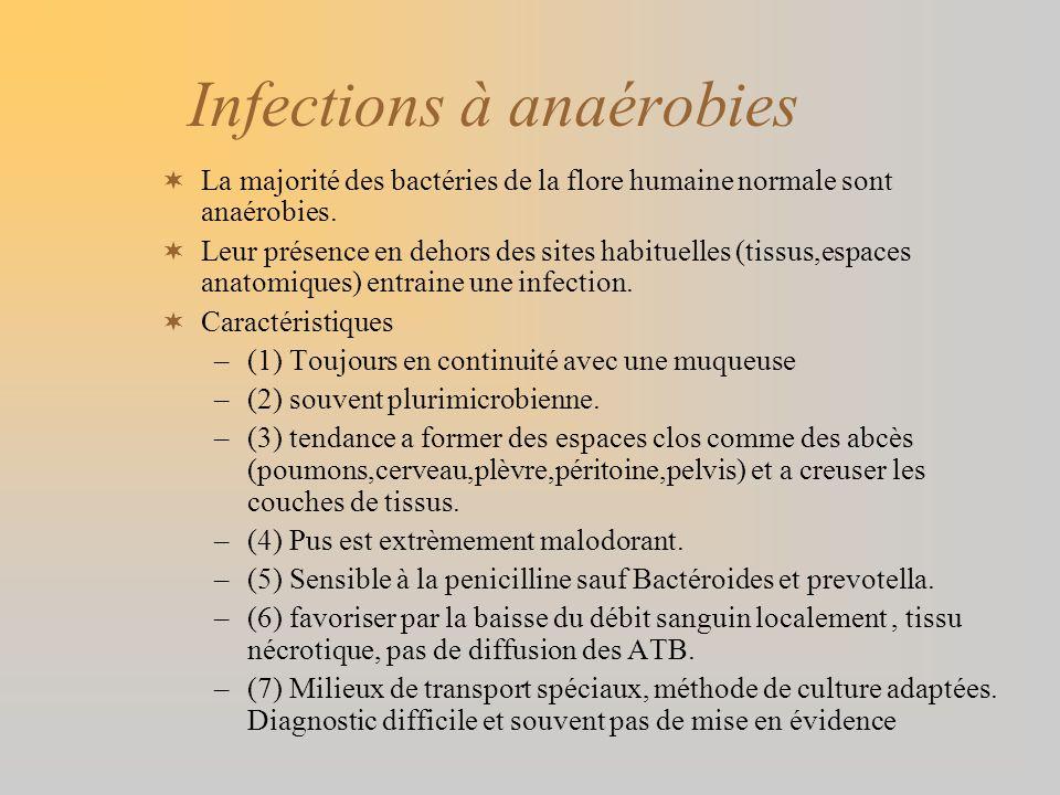 Infections à anaérobies La majorité des bactéries de la flore humaine normale sont anaérobies. Leur présence en dehors des sites habituelles (tissus,e