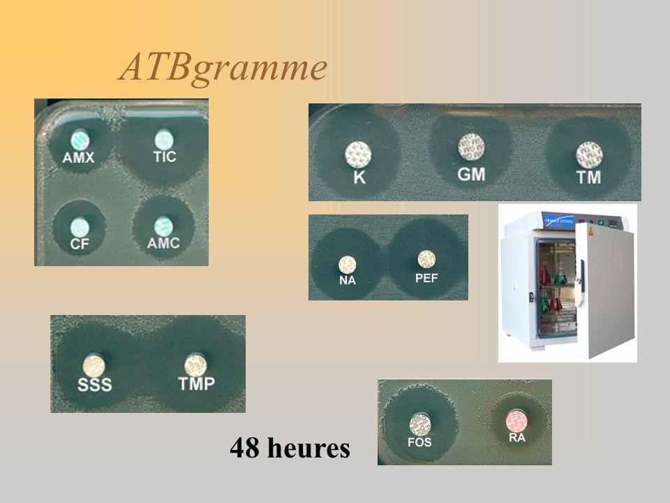 ATBgramme 48 heures