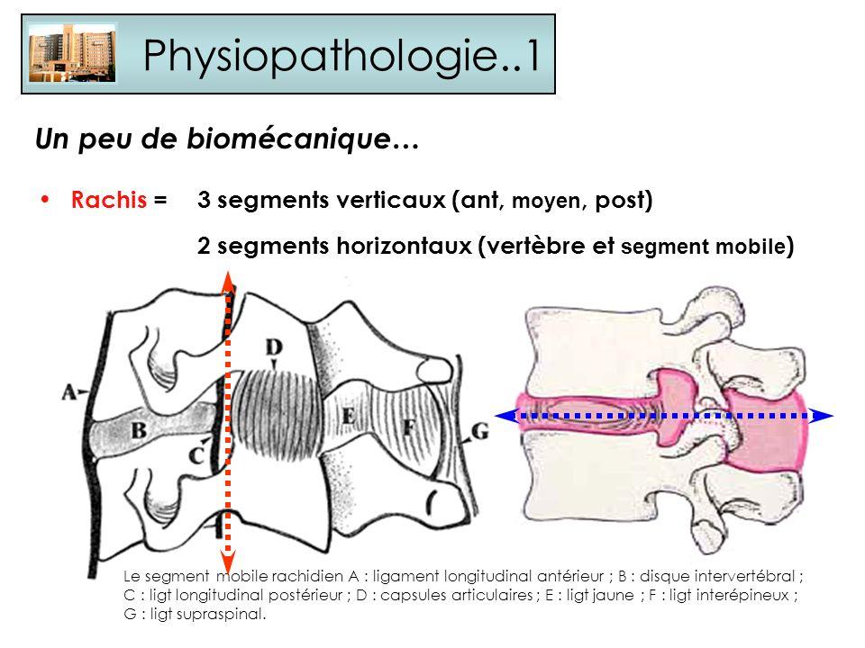 Physiopathologie..1 Rachis =3 segments verticaux (ant, moyen, post) 2 segments horizontaux (vertèbre et segment mobile ) Un peu de biomécanique… Le se