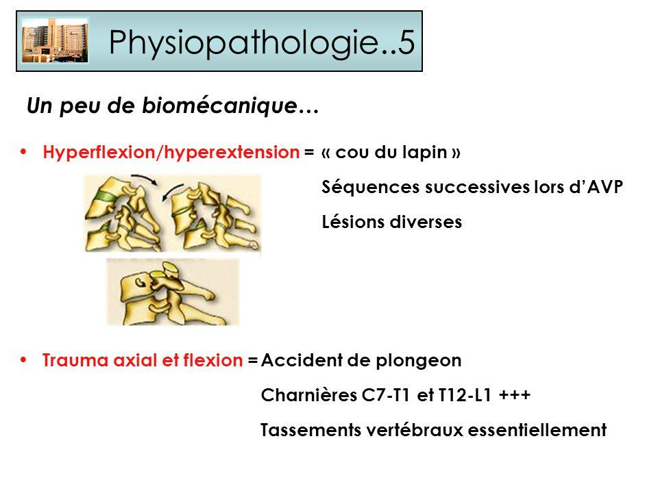 Physiopathologie..5 Hyperflexion/hyperextension =« cou du lapin » Séquences successives lors dAVP Lésions diverses Un peu de biomécanique… Trauma axia