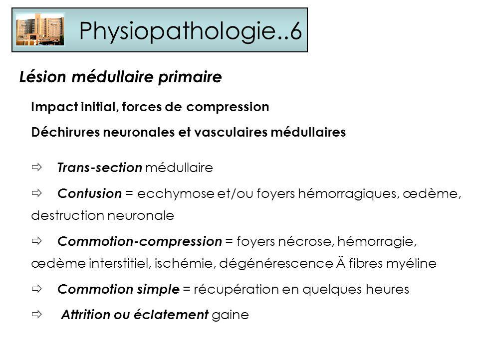Physiopathologie..6 Impact initial, forces de compression Déchirures neuronales et vasculaires médullaires Trans-section médullaire Contusion = ecchym