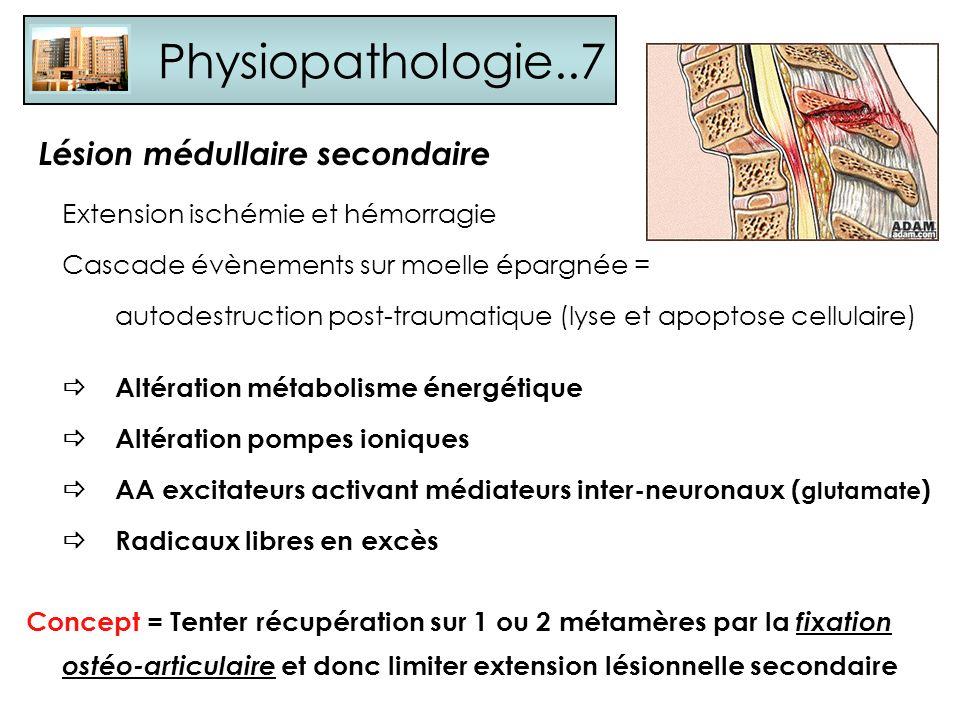 Physiopathologie..7 Extension ischémie et hémorragie Cascade évènements sur moelle épargnée = autodestruction post-traumatique (lyse et apoptose cellu
