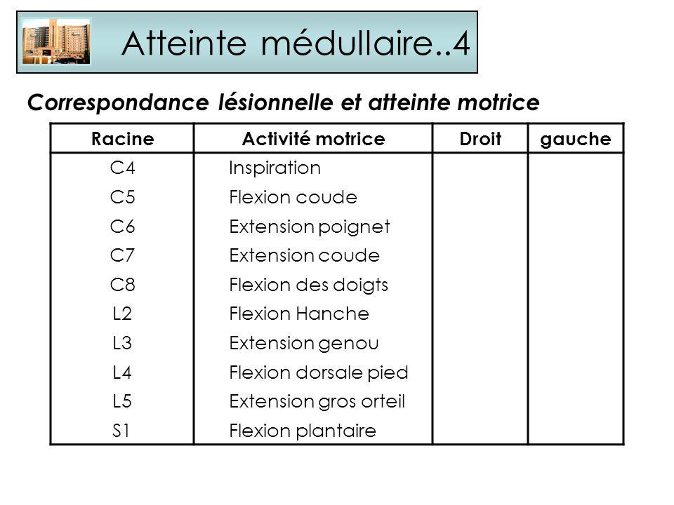 Atteinte médullaire..4 Correspondance lésionnelle et atteinte motrice RacineActivité motriceDroitgauche C4Inspiration C5Flexion coude C6Extension poig