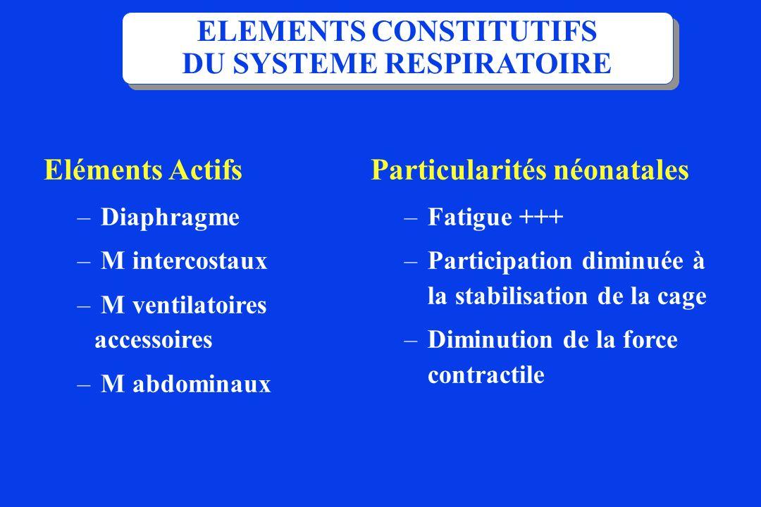 Eléments Passifs –Voies aériennes –Paroi thoraco-Abdominale –Tissu conjonctif pulmonaire –interface air liquide : Tension de surface (surfactant) ELEMENTS CONSTITUTIFS DU SYSTEME RESPIRATOIRE Particularités néonatales – Circulaire --> csq musc Compliante ++ – défaut de surfactant --> tension de surface --> expansion pulmonaire