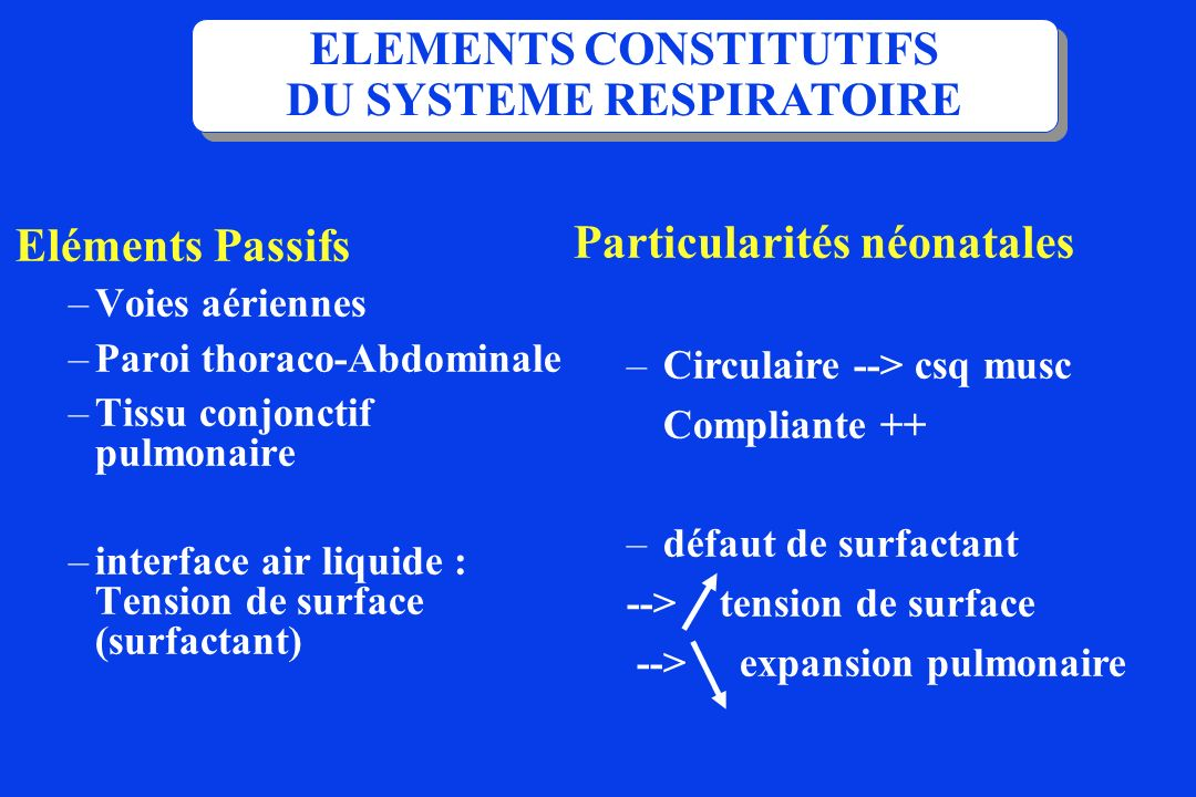 Eléments Passifs –Voies aériennes –Paroi thoraco-Abdominale –Tissu conjonctif pulmonaire –interface air liquide : Tension de surface (surfactant) ELEM