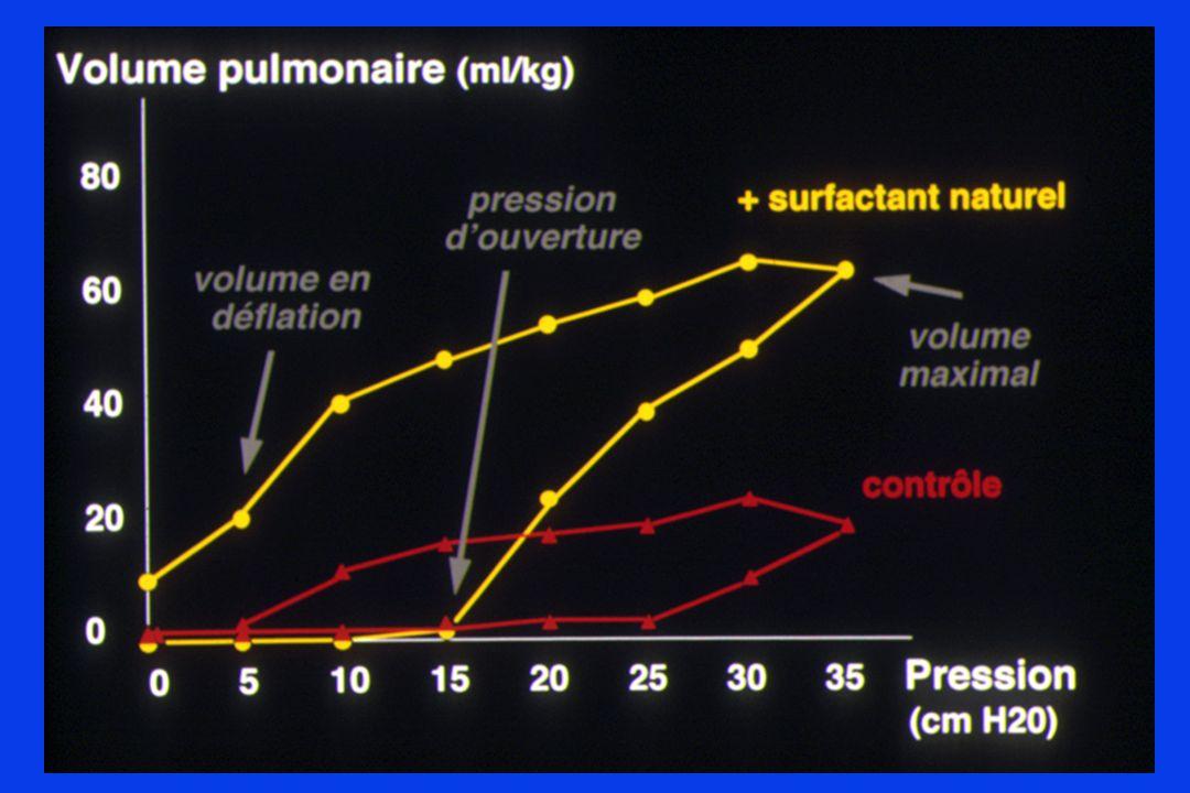 V Pulm P moy retour veineux et débit cardiaque Vt risque hypercapnie AUTO-PEP : Conséquences Nouvelles constantes du système : Kt ( C, R ) Nouvel équilibre aux dépens de : CAT : FR ; I/E ; P insufl