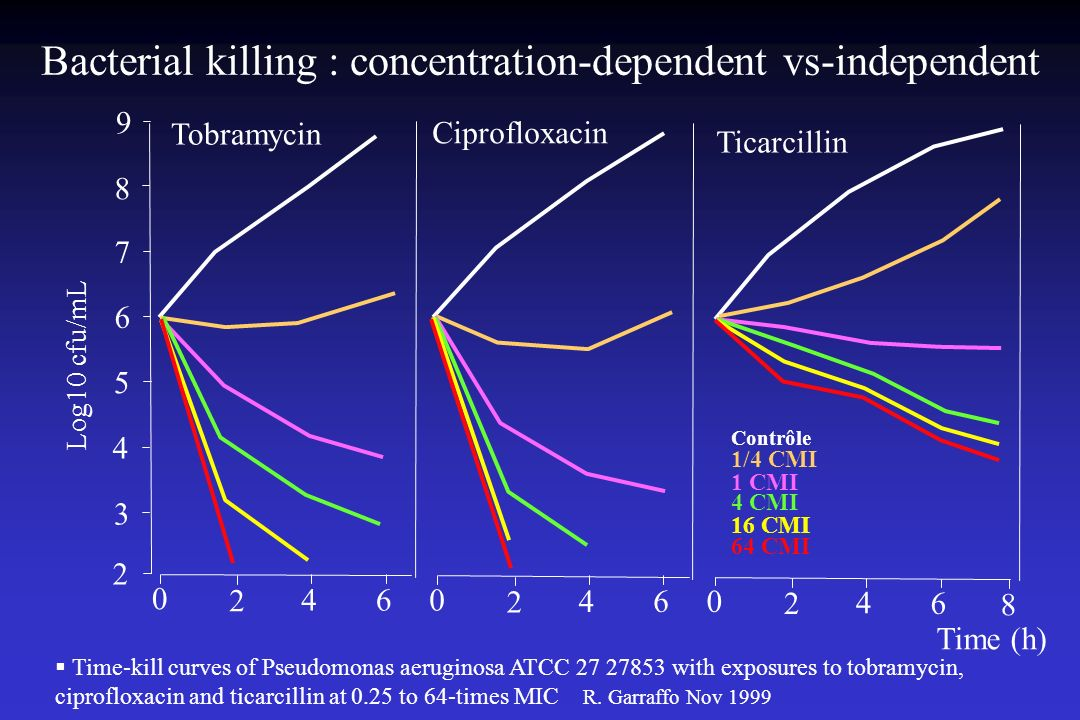 Bacterial killing : concentration-dependent vs-independent Time-kill curves of Pseudomonas aeruginosa ATCC 27 27853 with exposures to tobramycin, ciprofloxacin and ticarcillin at 0.25 to 64-times MIC R.