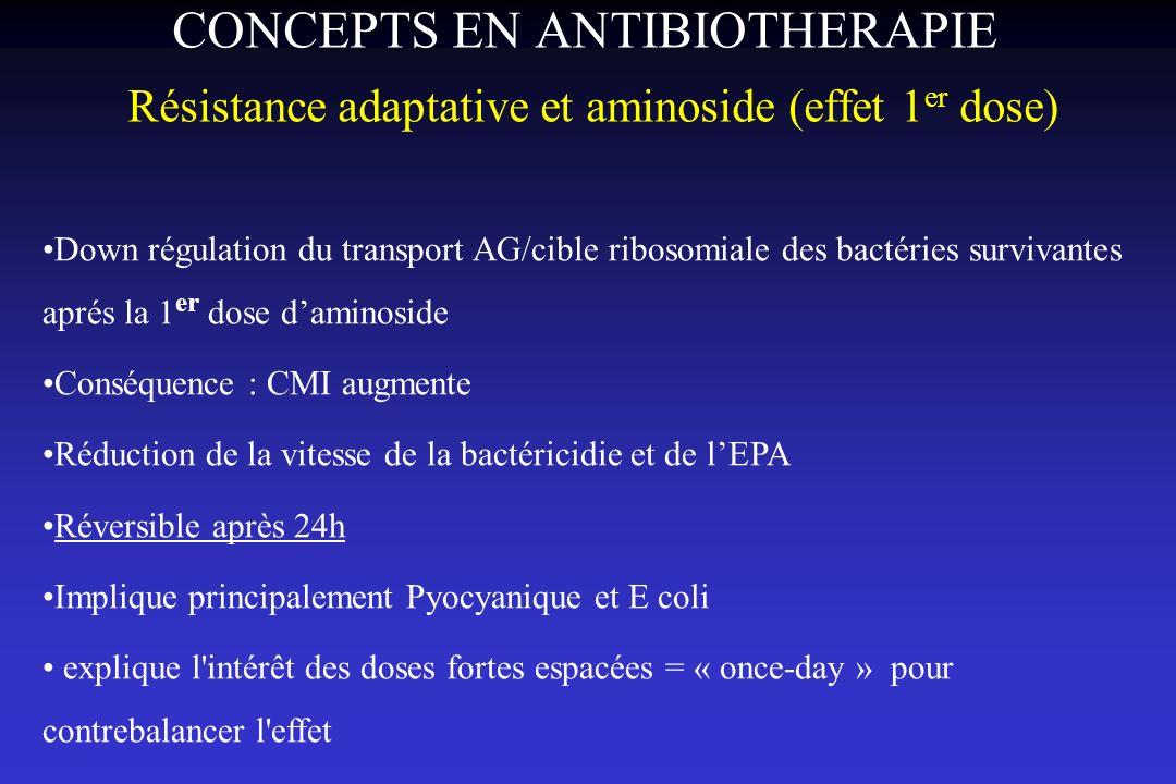 CONCEPTS EN ANTIBIOTHERAPIE Résistance adaptative et aminoside (effet 1 er dose) Down régulation du transport AG/cible ribosomiale des bactéries survi