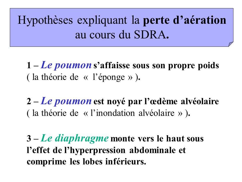 Hypothèses expliquant la perte daération au cours du SDRA. 1 – Le poumon saffaisse sous son propre poids ( la théorie de « léponge » ). 3 – Le diaphra