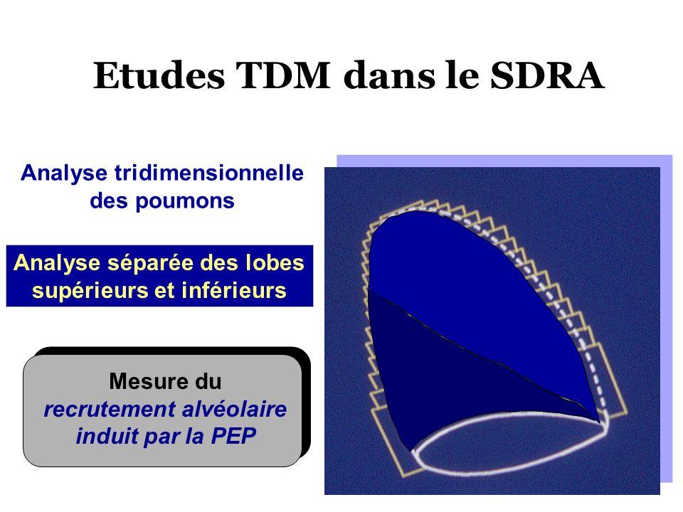 Analyse tridimensionnelle des poumons Analyse séparée des lobes supérieurs et inférieurs Mesure du recrutement alvéolaire induit par la PEP Etudes TDM
