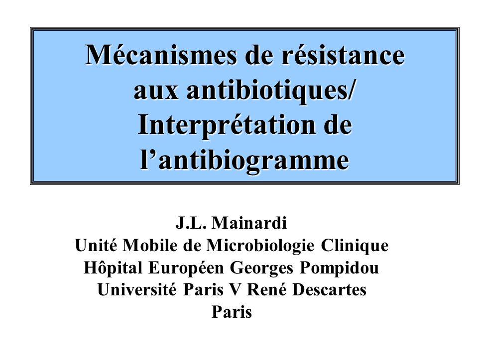 Mécanismes de résistance aux antibiotiques/ Interprétation de lantibiogramme J.L. Mainardi Unité Mobile de Microbiologie Clinique Hôpital Européen Geo