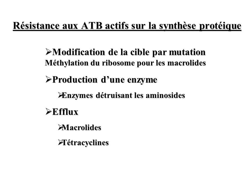 Résistance aux ATB actifs sur la synthèse protéique Modification de la cible par mutation Méthylation du ribosome pour les macrolides Modification de