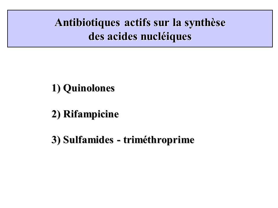 Antibiotiques actifs sur la synthèse des acides nucléiques 1) Quinolones 2) Rifampicine 3) Sulfamides - triméthroprime