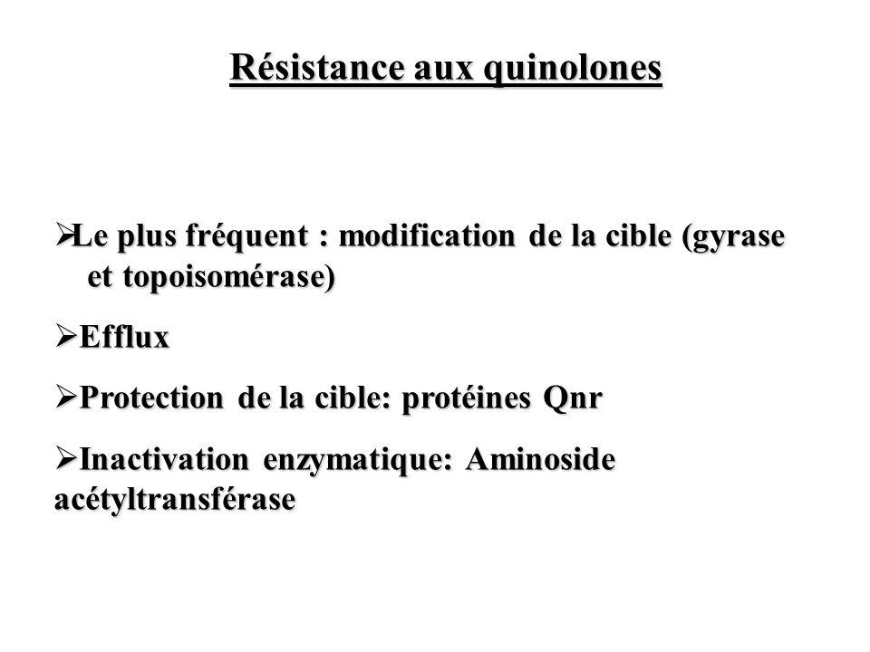 Résistance aux quinolones Le plus fréquent : modification de la cible (gyrase et topoisomérase) Le plus fréquent : modification de la cible (gyrase et