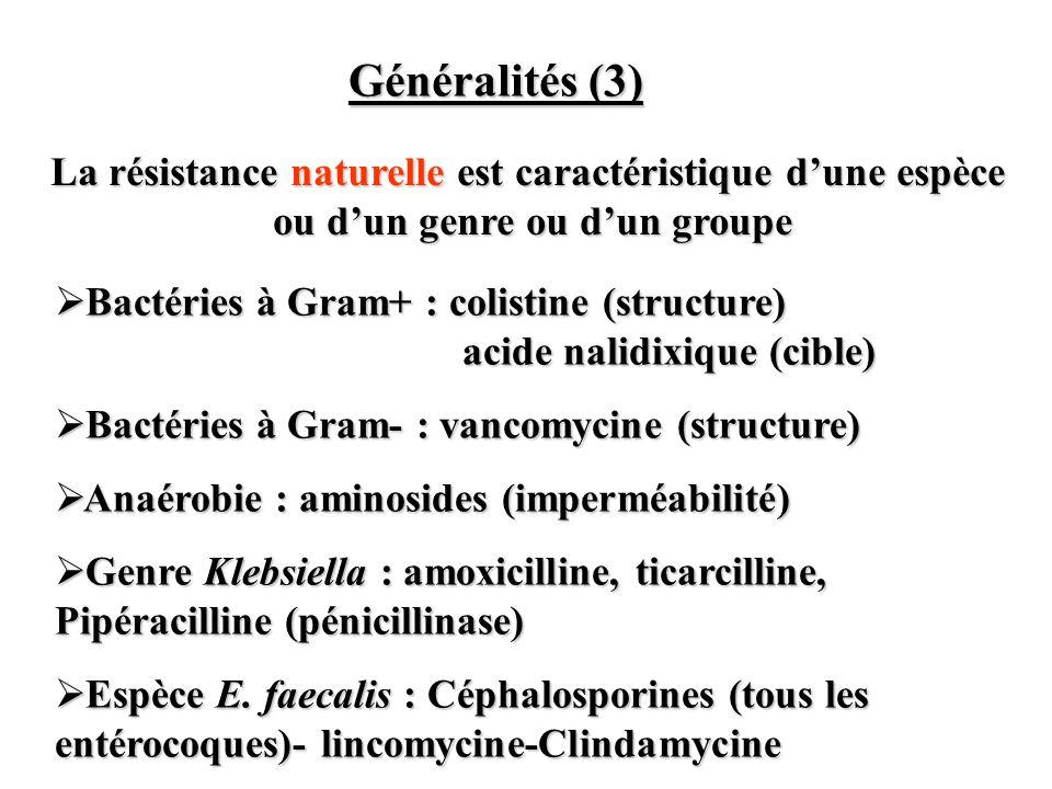 Bactéries à Gram+ : colistine (structure) acide nalidixique (cible) Bactéries à Gram+ : colistine (structure) acide nalidixique (cible) Bactéries à Gr