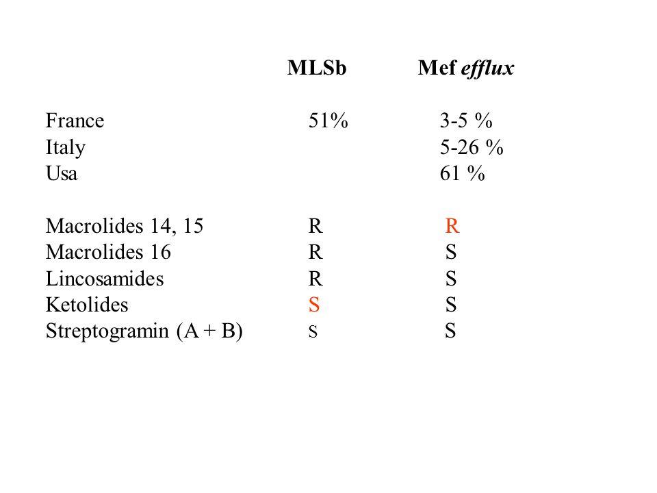 MLSb Mef efflux France51%3-5 % Italy5-26 % Usa61 % Macrolides 14, 15R R Macrolides 16R S LincosamidesR S KetolidesS S Streptogramin (A + B) S S