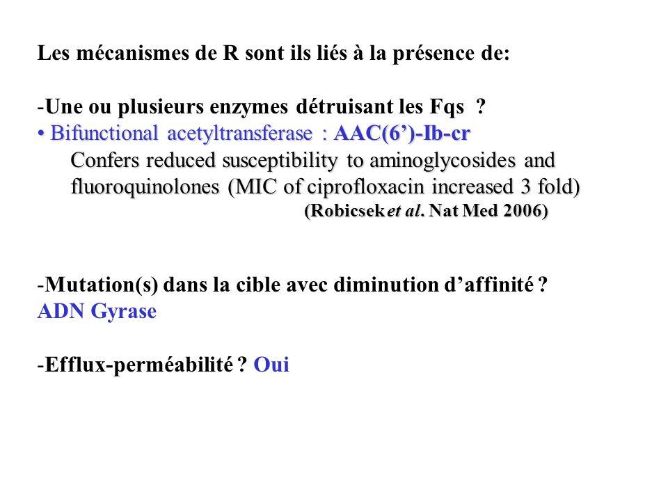 Les mécanismes de R sont ils liés à la présence de: -Une ou plusieurs enzymes détruisant les Fqs ? Bifunctional acetyltransferase : AAC(6)-Ib-cr Bifun