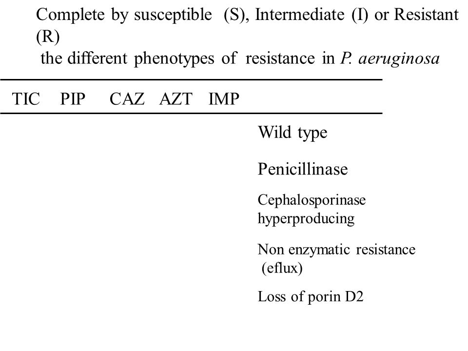 the different phenotypes of resistance in P. aeruginosa TICPIPCAZAZTIMP Wild type Penicillinase Cephalosporinase hyperproducing Non enzymatic resistan