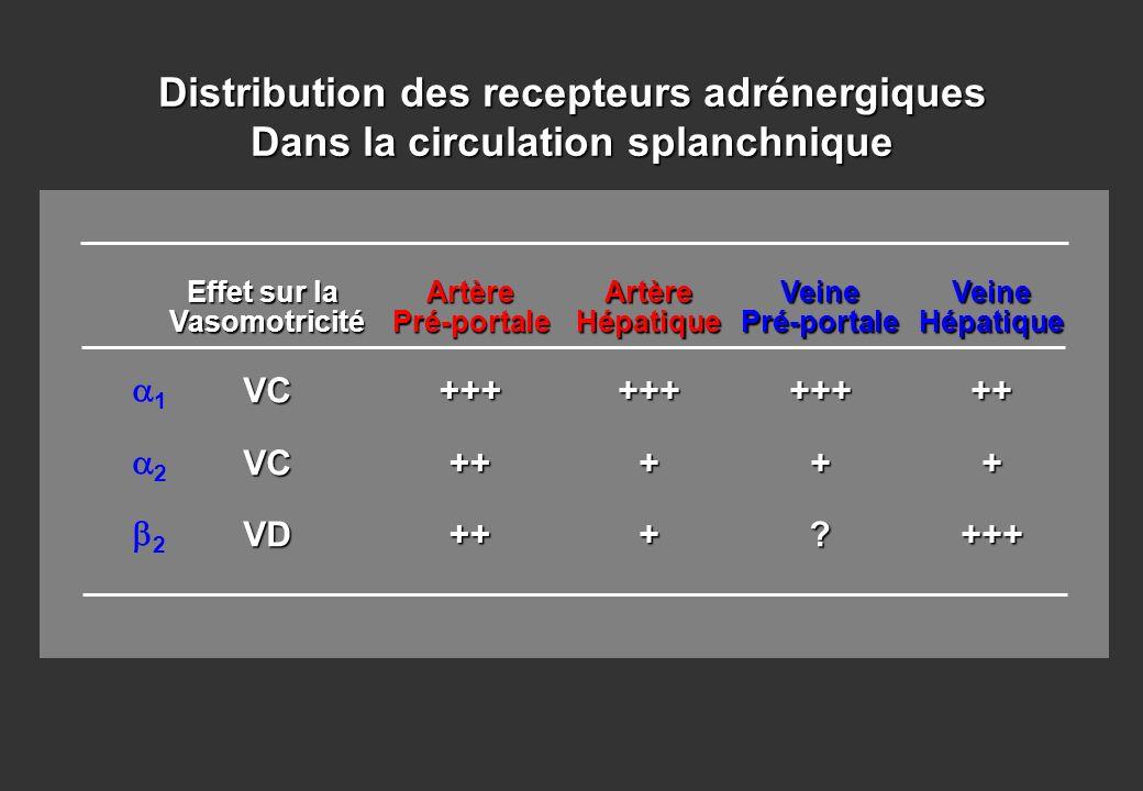 1 2 Effet sur la VasomotricitéVCVCVDArtèrePré-portale+++++++ArtèreHépatique+++++ Distribution des recepteurs adrénergiques Dans la circulation splanch