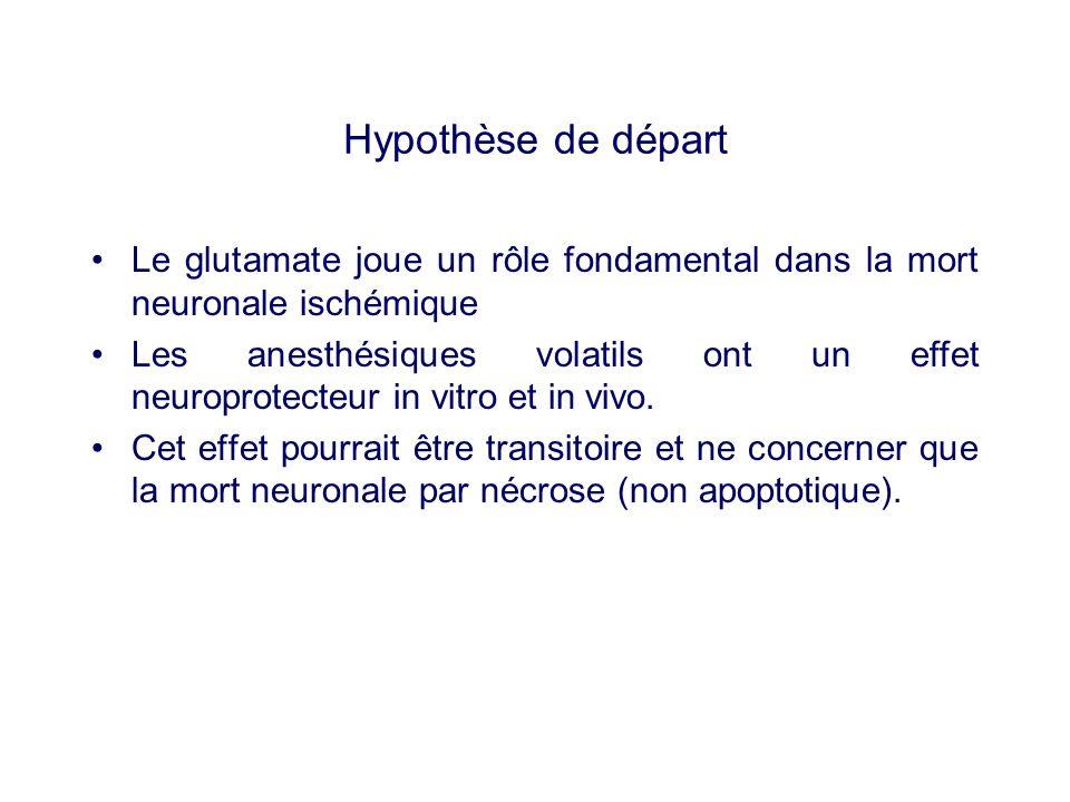 Hypothèse de départ Le glutamate joue un rôle fondamental dans la mort neuronale ischémique Les anesthésiques volatils ont un effet neuroprotecteur in