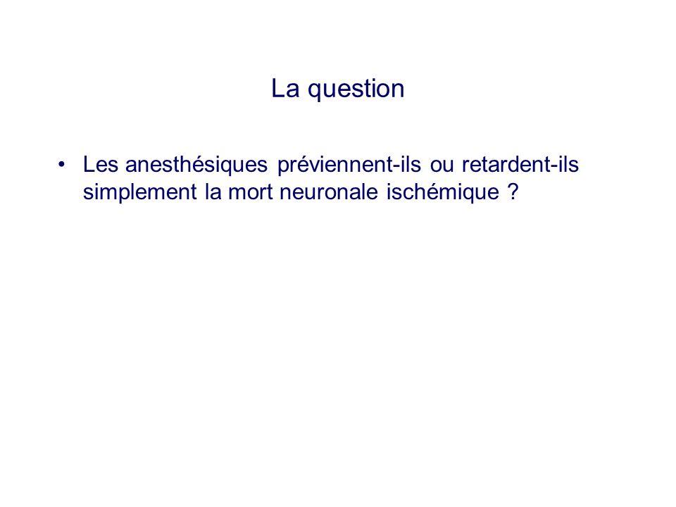 La question Les anesthésiques préviennent-ils ou retardent-ils simplement la mort neuronale ischémique ?