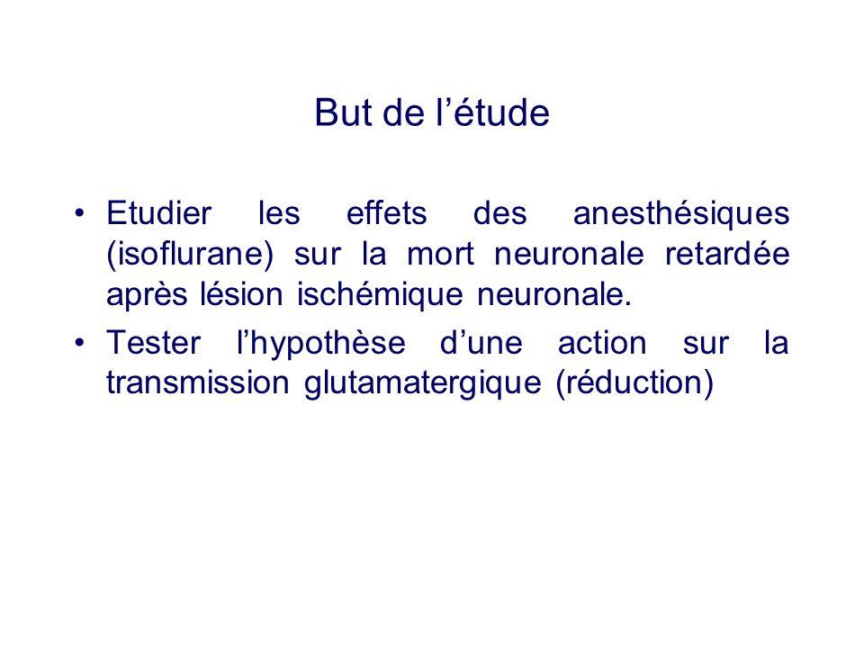 But de létude Etudier les effets des anesthésiques (isoflurane) sur la mort neuronale retardée après lésion ischémique neuronale. Tester lhypothèse du