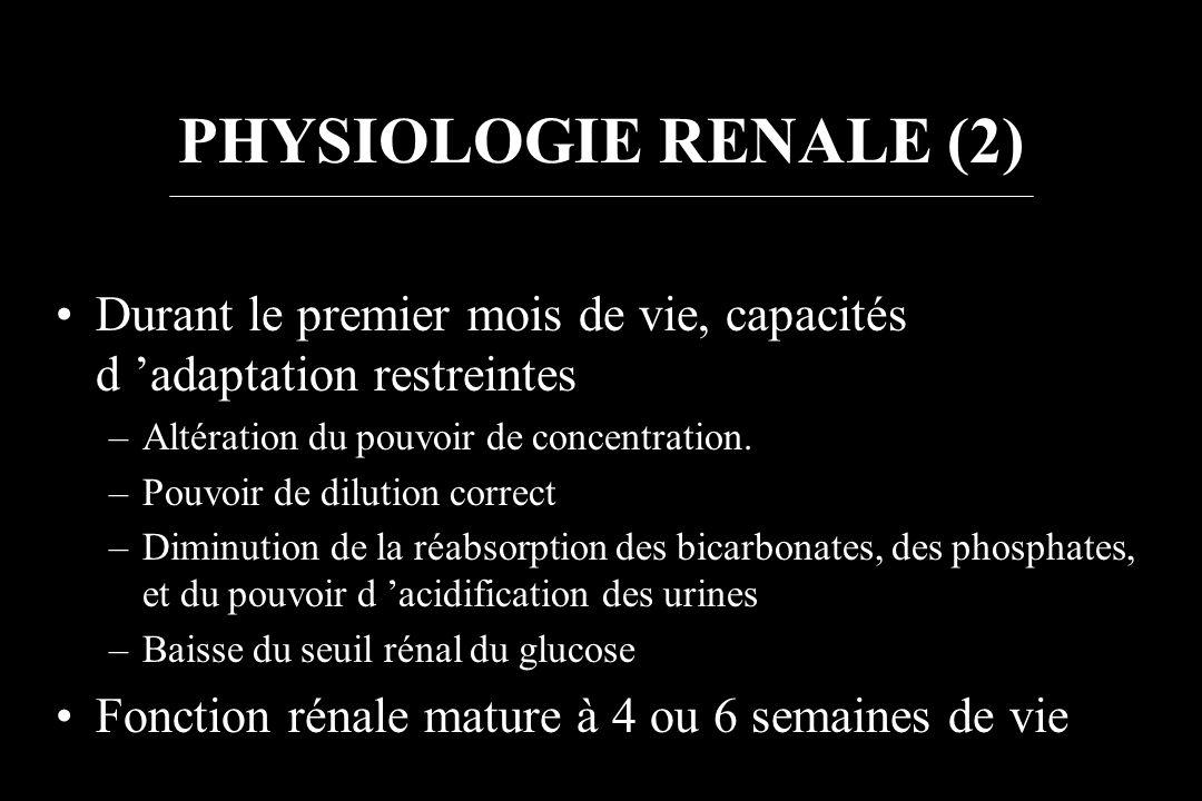 PHYSIOLOGIE RENALE (2) Durant le premier mois de vie, capacités d adaptation restreintes –Altération du pouvoir de concentration. –Pouvoir de dilution