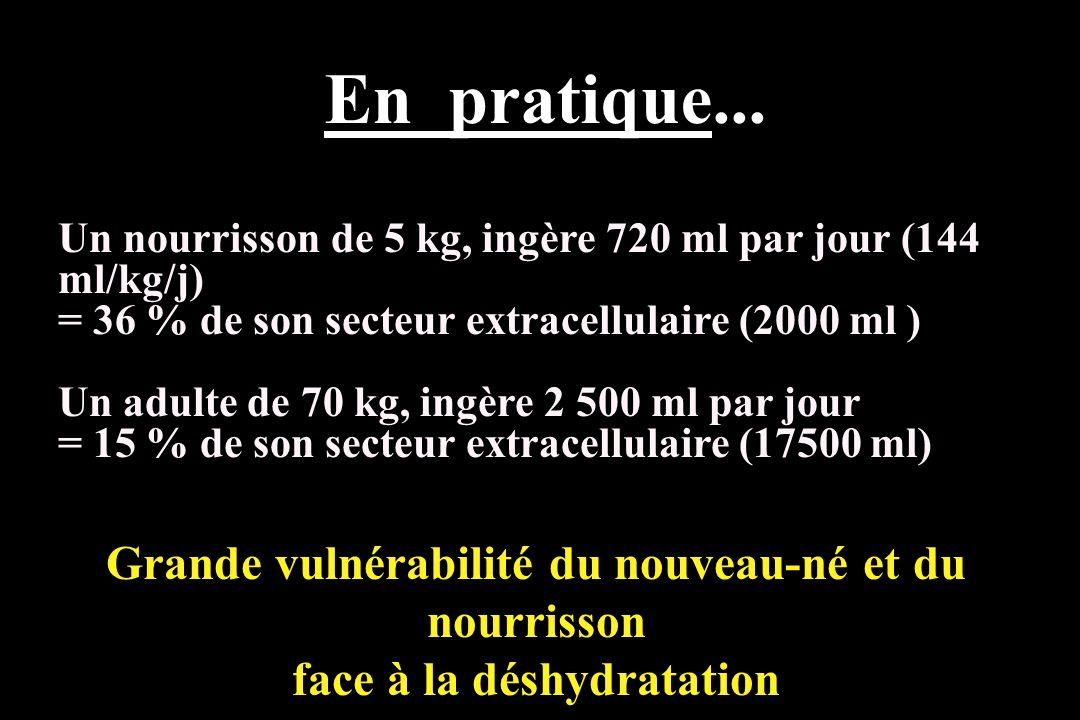 Un nourrisson de 5 kg, ingère 720 ml par jour (144 ml/kg/j) = 36 % de son secteur extracellulaire (2000 ml ) Un adulte de 70 kg, ingère 2 500 ml par j