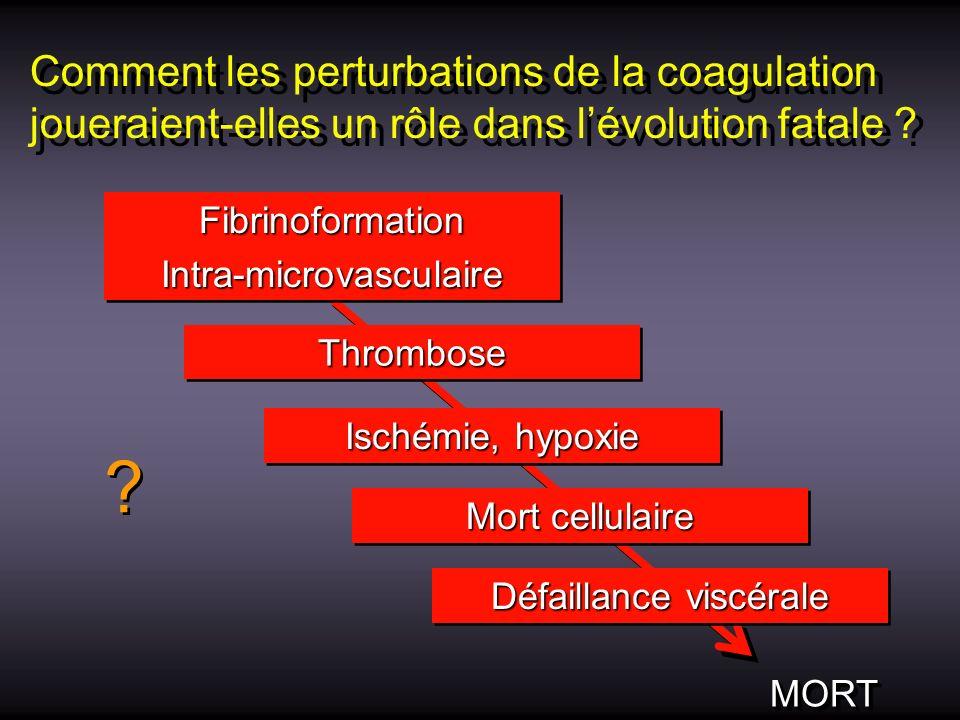 Comment les perturbations de la coagulation joueraient-elles un rôle dans lévolution fatale ? FibrinoformationIntra-microvasculaireFibrinoformationInt