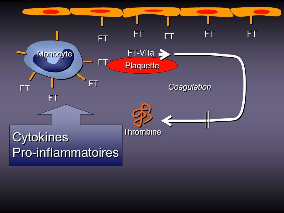 Plaquette Thrombine Coagulation FT-VIIa Monocyte FT FT FT FT FT FT FT FTFT Cytokines Pro-inflammatoires Cytokines Pro-inflammatoires