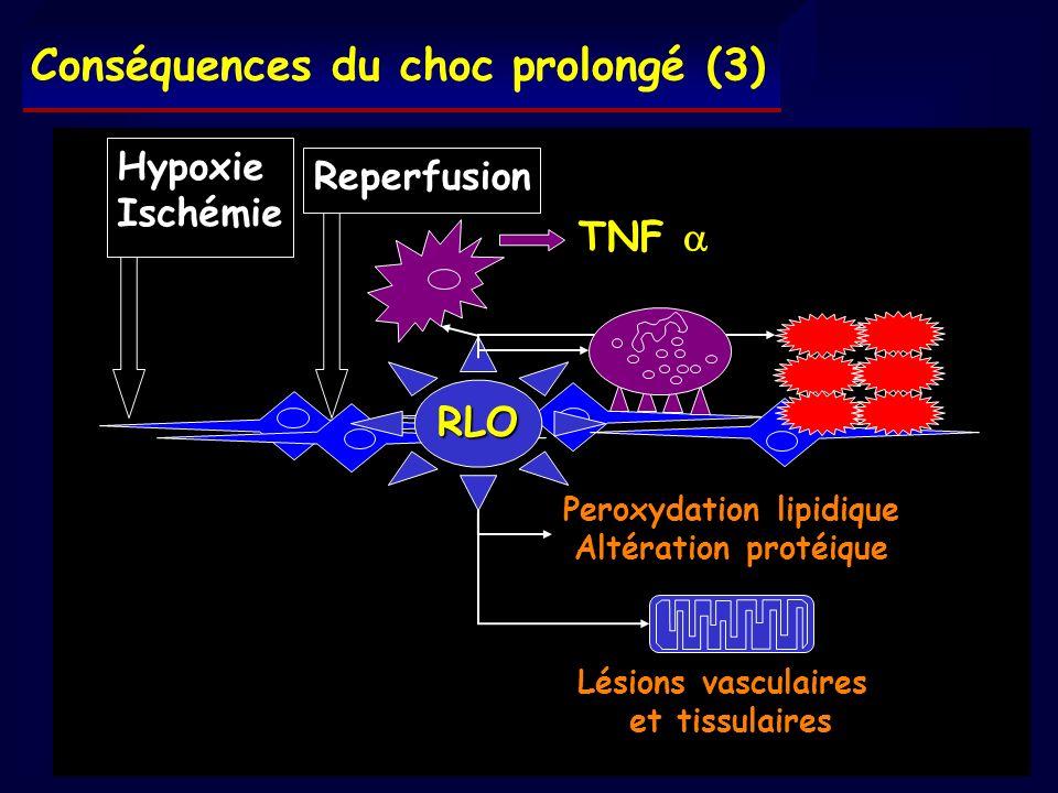 Hypoxie Ischémie Lésions vasculaires et tissulaires Reperfusion RLO TNF TNF Peroxydation lipidique Altération protéique Conséquences du choc prolongé
