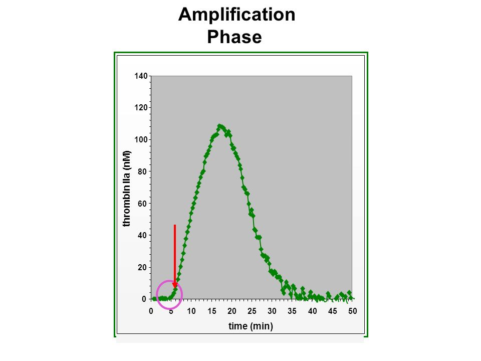 Amplification Phase 20253035404550 time (min) thrombin IIa (nM)