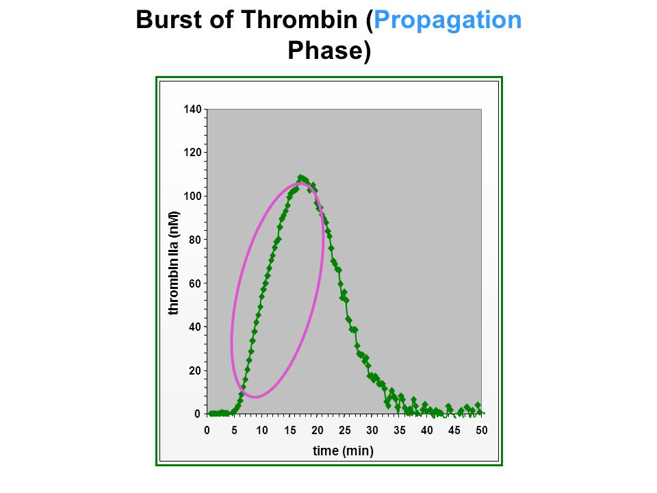 20253035404550 time (min) thrombin IIa (nM) Burst of Thrombin (Propagation Phase)