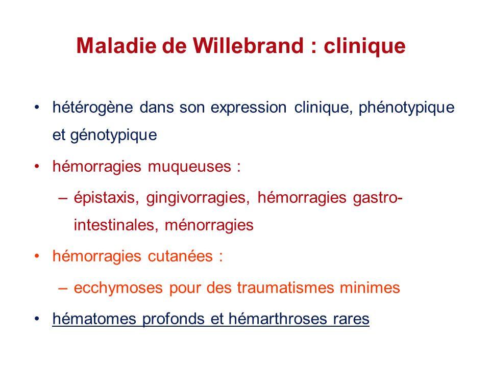 Maladie de Willebrand : clinique hétérogène dans son expression clinique, phénotypique et génotypique hémorragies muqueuses : –épistaxis, gingivorragi